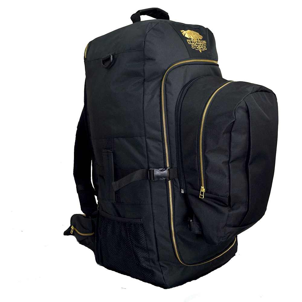 Jetsetter 65L travel pack